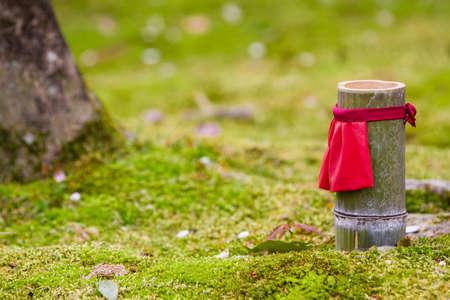 lucky charm: japan garden with lucky charm