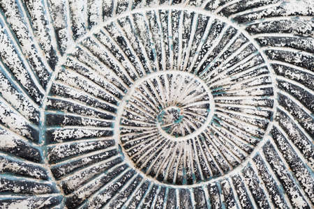 helical: a detail of a grey stone helical spiral