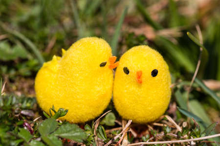 twee: little artificial chick outdoors in various pose Stock Photo