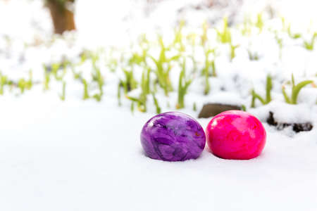 lying in: two colored easter eggs lying in the snow