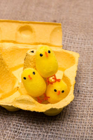 egg box: three yellow little toy chicken sitting in a egg box Stock Photo