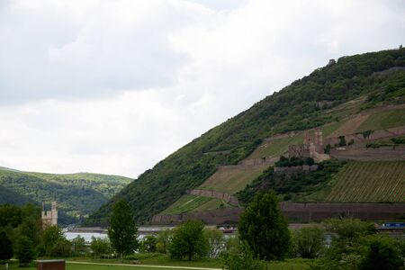 View on the hill and the hidden rhine in bingen at the rhine in hesse germany photographed on a cloudy day