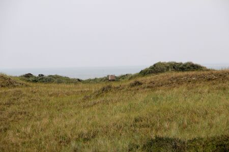 Distant view on a grass area on the northern sea island Imagens
