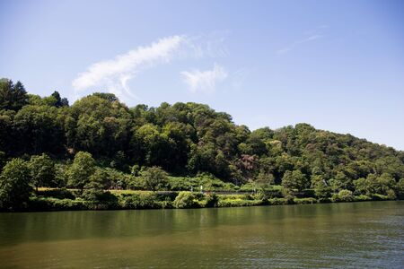 View on the trees on a hill under a blue skies at the neckar in Heidelberg germany photographed during a tour by ship on the neckar in germany Imagens