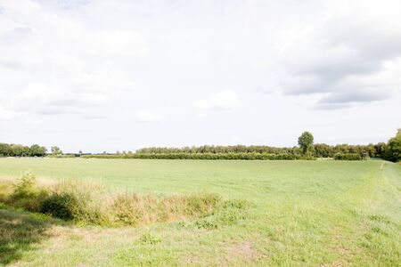Distant view on a field in the bog in Herzlake Emsland. Germany. Photographer on a walk through the moor on a sunny day