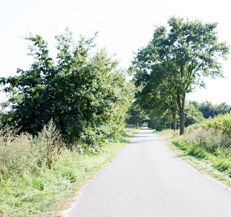 View on a path in laten emsland germany photographed during a walk in the nature on a sunny day