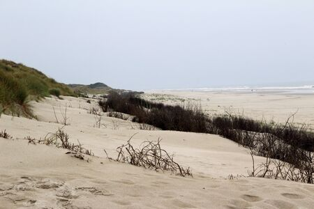 View on the white sand dune at the northern sea island juist germany