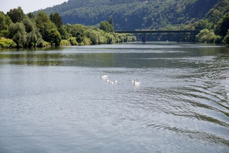 Distant view along the neckar river and the nature in heidelberg germany Stockfoto