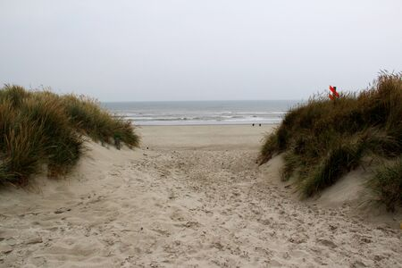 View on a foot path through the dunes at the northern sea island juist germany