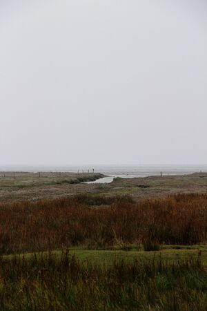View on end at the natural landscape at the northern sea island juist germany Stockfoto