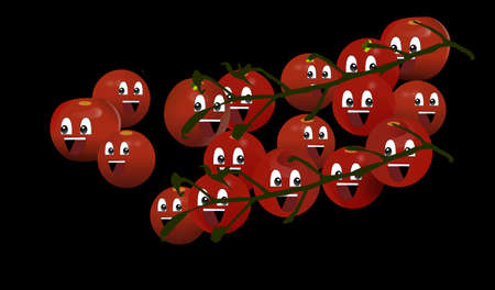 bunches of tomatoes Illustration