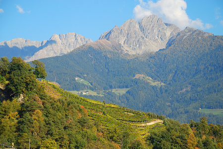 Panorama view on valleys and mountains (Sarntal Alps) in the italian alps (Meran, South Tyrol, Italy). Mountain Ifinger (ital. Picco Ivigna), 2581m