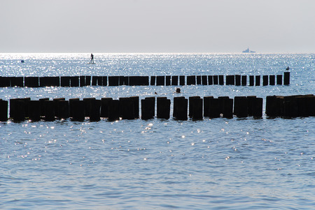 Coast protection at the baltic sea (Darss, Western beach, Germany): groynes in the evening.  In the ocean, groynes create beaches or prevent them being washed away by longshore drift. Standard-Bild - 114259603