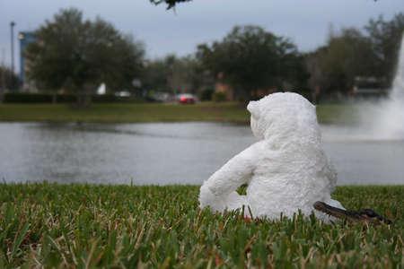 Alligator sneaking up on a stuffed polar bear Banco de Imagens