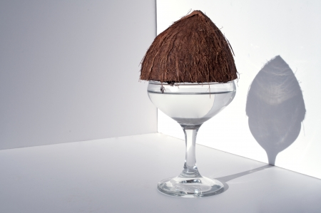 A picture of a half of a coconut sitting on top of a fancy glass.