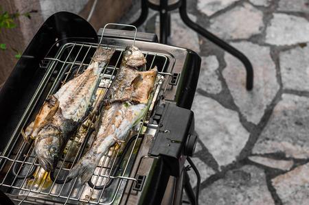 salmo trutta: Grilling fish copyspace