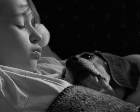 Loyality- Monochrome Photo of Child Sleeping with Pet Dog Stock Photo - 945203