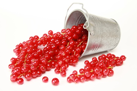 red currant: Red currants on a white background falling out of a bucket Stock Photo