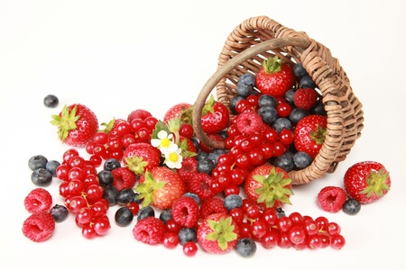 On a table there are strawberries, bilberries, red currants, raspberries and blackberries photo