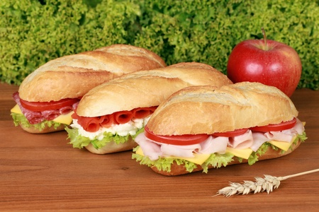 Fresh sandwiches with ham, salami and smoked salmon