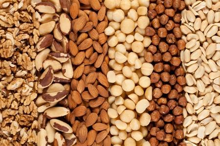 Pinda's, walnoten, amandelen, hazelnoten, paranoten en macadamia's naast elkaar Stockfoto