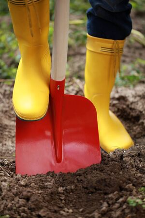 A woman in yellow boots is digging soil with a shovel in a garden