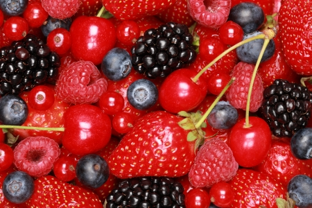red currants: Collection of cherries, strawberries, bilberries, red currants, raspberries and blackberries Stock Photo