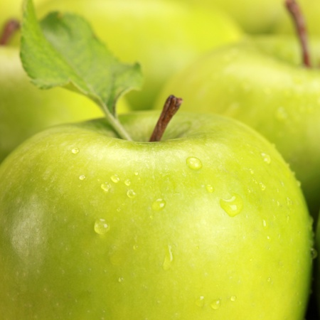 Closeup of green apples with water drops photo