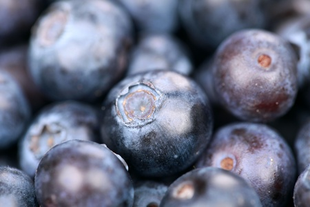 vitamines: Macro shot of a group of fresh blueberries with shallow depth of field Stock Photo