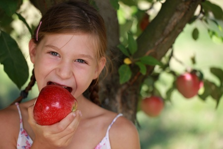 albero di mele: Ragazza che mangia una mela sotto un melo. Profondit� di campo. Archivio Fotografico