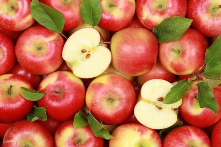 その葉と赤りんごのグループ 写真素材