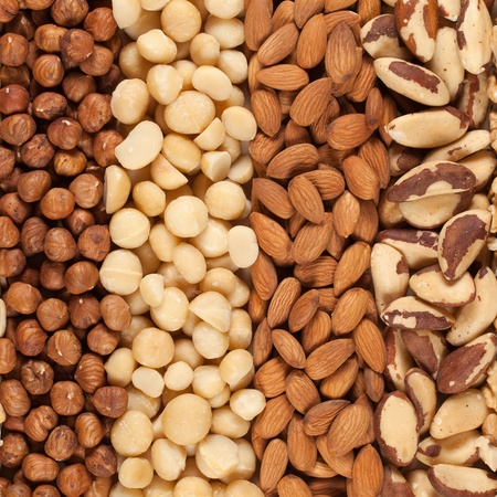 avellanas: Colecci�n de diferentes frutos secos forman un fondo