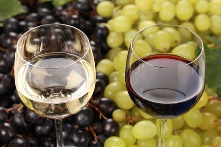 glass of white wine: Red wine and white wine in glasses with selective focus