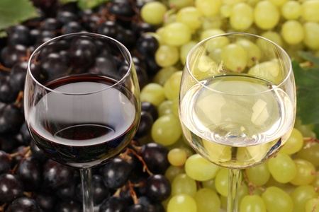 winetasting: White wine and red wine in glasses with grapes in the background
