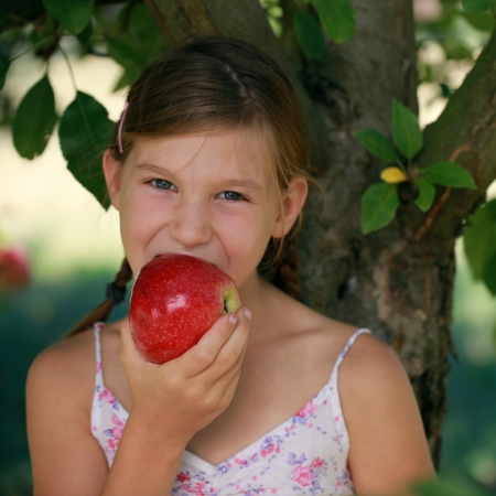 Little girl biting into an apple under an apple tree photo
