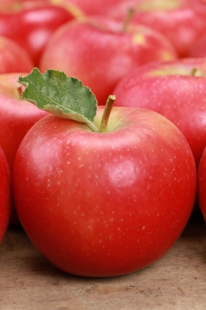 Closeup of red apples with their leaves Stock Photo - 17078527