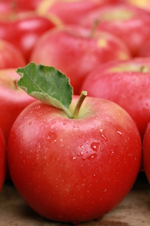 Red apple with a leaf, with more apples in the background Stock Photo - 17884643