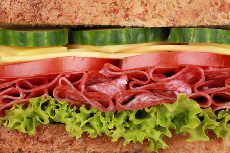 Closeup of a fresh sandwich with salami, cheese, tomatoes, lettuce and cucumber Stock Photo - 18354206
