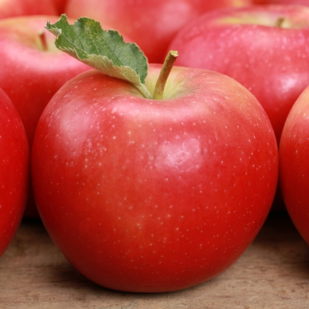 Closeup of a red apple with a leaf Stock Photo - 18933575