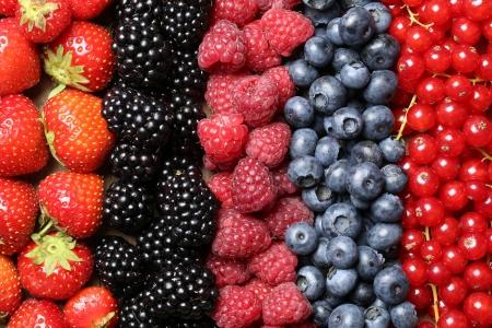 Bessen vruchten zoals aardbeien, bosbessen, rode bessen, frambozen en bramen op een rij