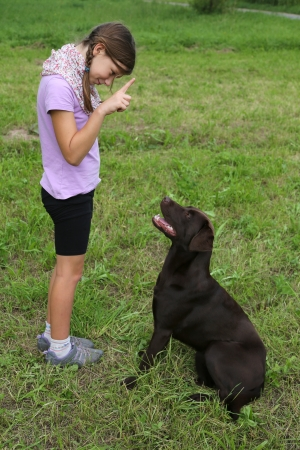Little girl trains a dog on a meadow  photo