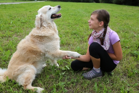 A dog is shaking hands with a child on a meadow