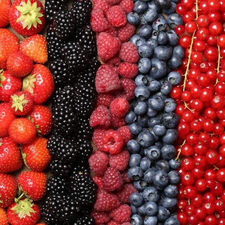 blackberries: Fresh berry fruits like strawberries, bilberries, red currants, raspberries and blackberries forming a background