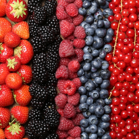 Verse bessen vruchten zoals aardbeien, bosbessen, rode bessen, frambozen en bramen vormen een achtergrond Stockfoto