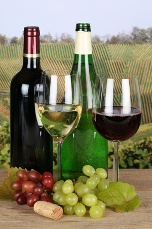 winetasting: Red and white wine in bottles with grapes in the vineyards Stock Photo