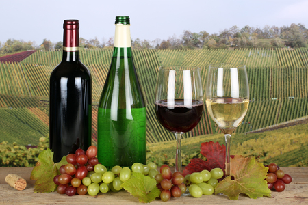 winetasting: Red and white wine in bottles in the vineyards Stock Photo