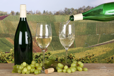 winetasting: White wine pouring from a bottle into a wine glass in the vineyards Stock Photo