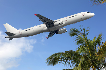 An Airplane taking off between palm trees into vacation during a journey