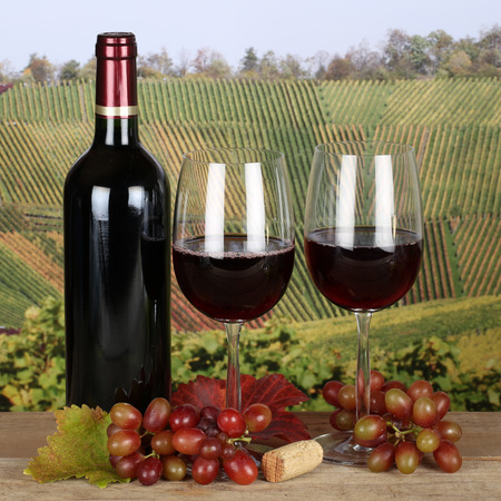 winetasting: Red wine in a bottle and in wine glasses in the vineyards in autumn