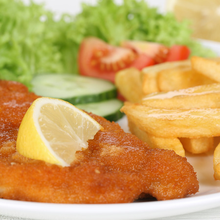schnitzel: Schnitzel meal with french fries and lettuce on plate Stock Photo